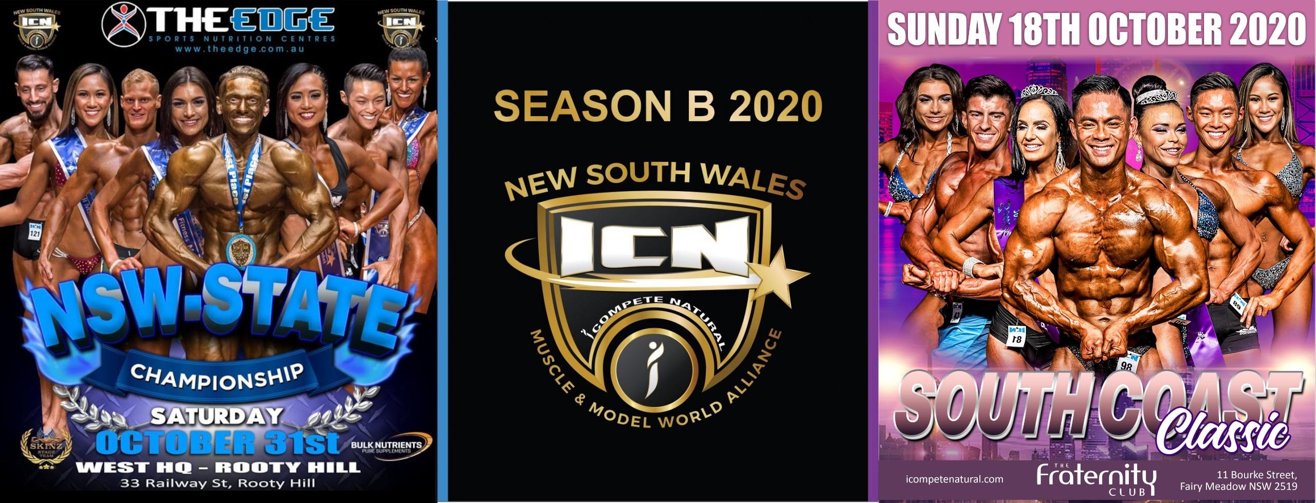 ICN NSW 2020