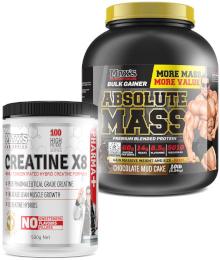 maxs mass gain stack